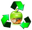 fruits recycling (TR)