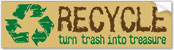 RECYCLE: turn trash into treasure